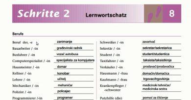 schritte 2 lektion 8